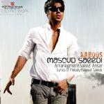 کاور آهنگ Masoud Saeedi - Kaboos