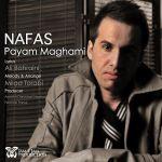 کاور آهنگ Payam Maghami - Nafas