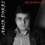 کاور آهنگ Amir Dorri - Shab be Golestan Tanha