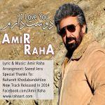 کاور آهنگ Amir Raha - Dooset Daram