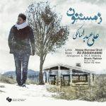 کاور آهنگ Ali Abdolmaleki - Zemestoon