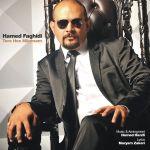 کاور آهنگ Hamed Faghidi - Toro Hes Mikonam