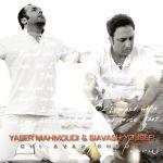 کاور آهنگ Yaser Mahmoudi - Chi Avaz Shode