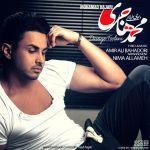 کاور آهنگ Mohammad Hajari - Davaye Toolani