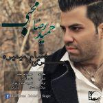 کاور آهنگ Hamid Reza Mohebbi - Beri Donyam Mimire