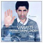 کاور آهنگ Payam Esmaelzadeh - Vabaste