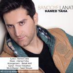 کاور آهنگ Hamed Taha - Banuye Lanati