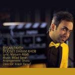 کاور آهنگ Ehsan Payeh - Dooset Daram Khob