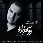 کاور آهنگ Arash Dolatabadi - Dosam Nadareh