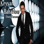 کاور آهنگ Keyvan Baharloo - Dos Daram