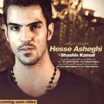 کاور آهنگ Shahin Kamali - Hesse Asheghi