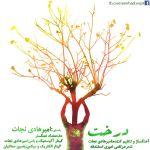 کاور آهنگ Amir HadiNejat - Derakht