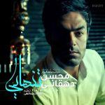 کاور آهنگ Mohsen Dehghani - Tanhaee