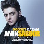 کاور آهنگ Amir Saboor - Dooset Daram