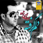 کاور آهنگ Mehdi Hasanzadeh - Delam Gerefteh