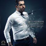 کاور آهنگ Saeed Kermani - Tanham bezar