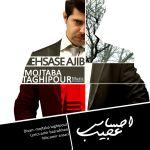 کاور آهنگ Mojtaba Taghi pour - Ehsase Ajib