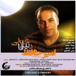 کاور آهنگ AmirHafez - Donyaye Fani