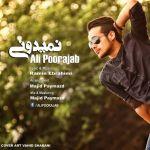 کاور آهنگ Ali Poorajab - Nemidooni