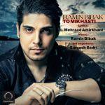 کاور آهنگ Ramin Bibak - TO Mikhasti