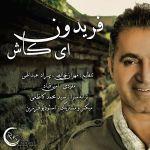 کاور آهنگ Fereydoun - Ey Kash