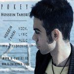 کاور آهنگ Hossein Taheri - Delgir