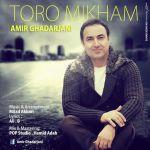 کاور آهنگ Amir Ghadarjani - Toro Mikham