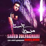 کاور آهنگ Saeed Zolfaghari - MordeParasta