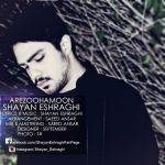 کاور آهنگ Shayan Eshraghi - Arezoohaam