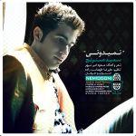 کاور آهنگ Saeid Dastranj - Nemidooni