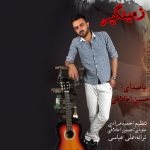 کاور آهنگ Hossein Akhlaghi - Zamingir