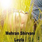 کاور آهنگ Mehran Shirvani - Leyla