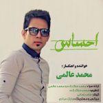 کاور آهنگ Mohammad Alami - Ehsas