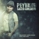 کاور آهنگ Saeed Amlashi - Peyvand