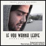 کاور آهنگ Ardalan Tomeh - If You Wanna Leave