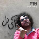 کاور آهنگ Sina Hejazi - Ay Del