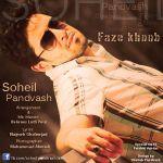 کاور آهنگ Soheil Pandvash - Faze Khoob