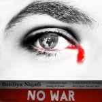 کاور آهنگ Bardiya Najafi - No War