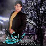 کاور آهنگ Mohammad Ahmadi - Dele Divooneh