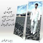کاور آهنگ Javad Yasari - Vatan