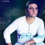 کاور آهنگ Shahab Khalili - Yadet Miad