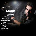 کاور آهنگ Saeid Parchami - Ehsase Ziba