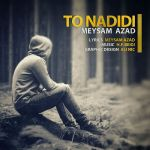 کاور آهنگ Meysam Azad - To Nadidi