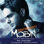 کاور آهنگ Mobin Rasaei - Khoshbakhti