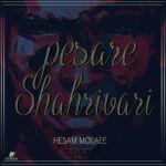 کاور آهنگ Hesam Molaei - Shahrivari