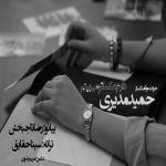 کاور آهنگ Hamid Modiri - Daram Aksato Mibinam