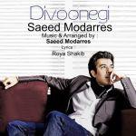 کاور آهنگ Saeed Modarres - Divoonegi