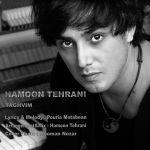 کاور آهنگ Hooman Tehrani - Taghvim
