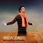 کاور آهنگ Saeed Modarres - Man Bidalil Khoshhalam