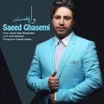کاور آهنگ Saeed Ghasemi - Vabaste